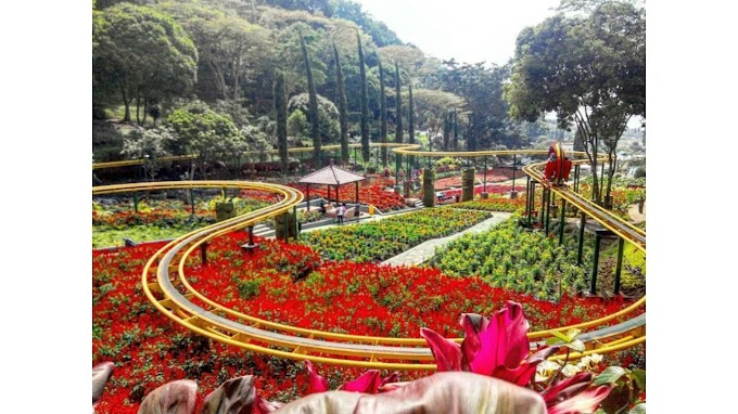 Tempat Wisata Keluarga di Batu Malang yang Ingin Dikunjungi