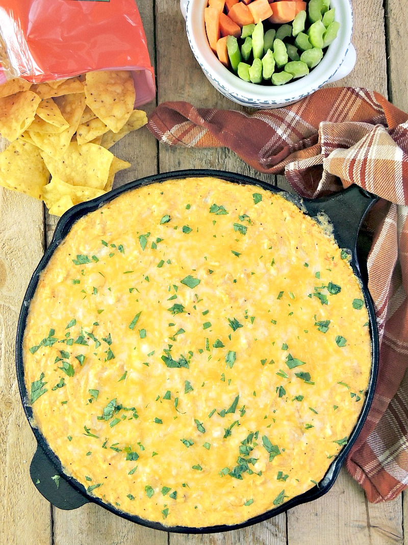 Buffalo Chicken Dip AKA Chicken Crack - this easy to make dip recipe that takes everything you love about Buffalo wings and packs it into a deliciously cheesy dip that you just can't stop eating! #chicken #appetizer #dip #glutenfree #keto #lowcarb #LCHF | bobbiskozykitchen.com
