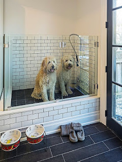 área para cães em condomínios