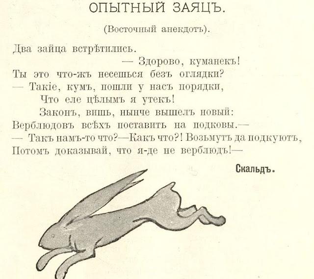 анекдоты про зайцев