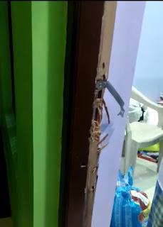 ताला तोड़कर घर मे घुसे चोर, 1.5 लाख की नगदी व 3.5 लाख के जेवरों पर किया हाथ साफ
