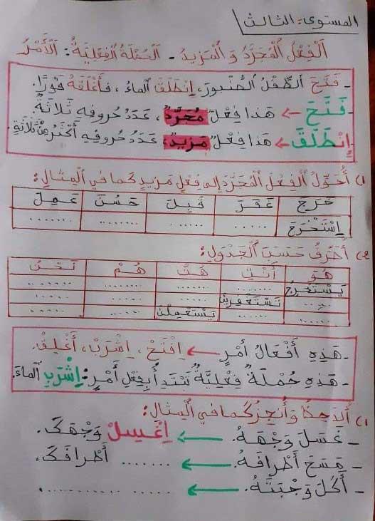 أنشطة-داعمة-المجرد-و-المزيد-و-الجملة-الفعلية-اللغة-العربية--للمستوى-الثالث-ابتدائي-