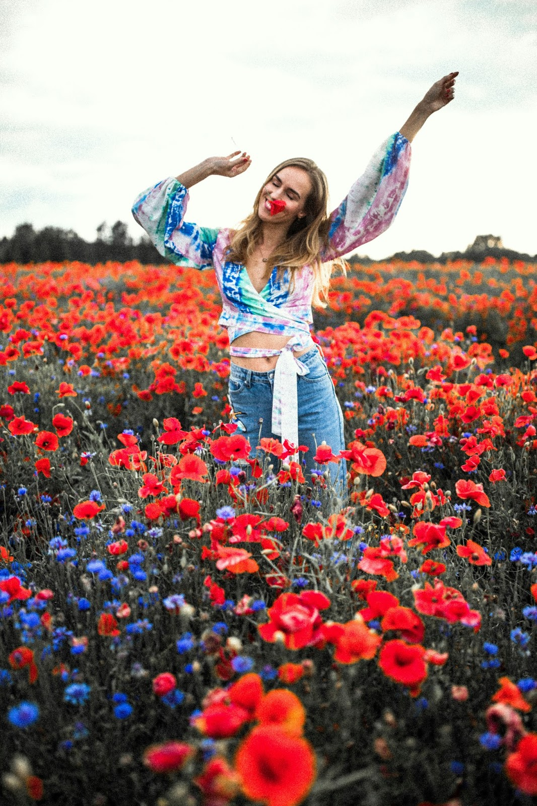poppy field photography