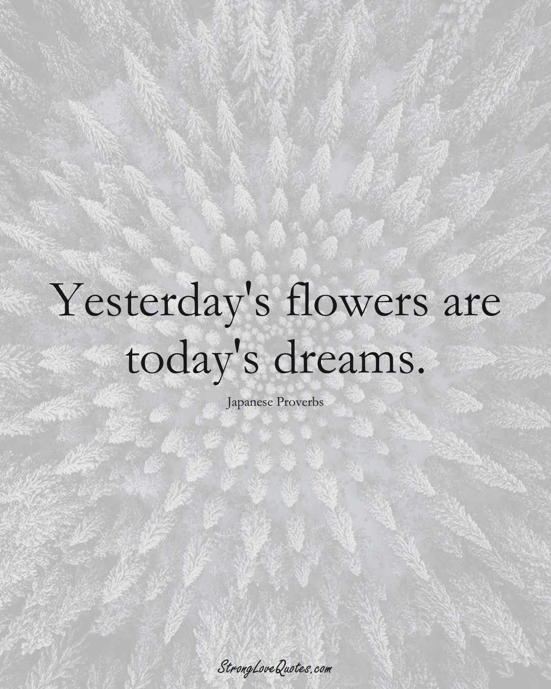 Yesterday's flowers are today's dreams. (Japanese Sayings);  #AsianSayings