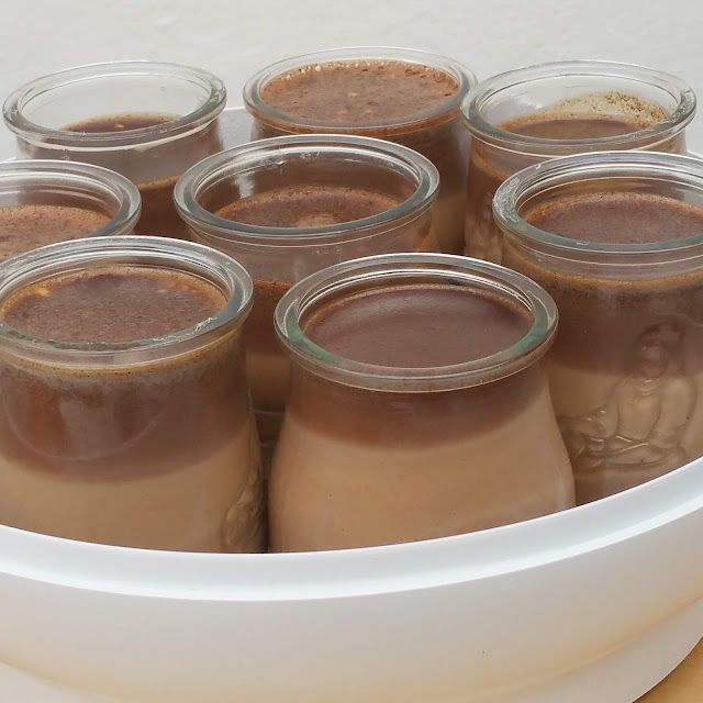 YOGURES DE CHOCOLATE ( YOGURTERA).