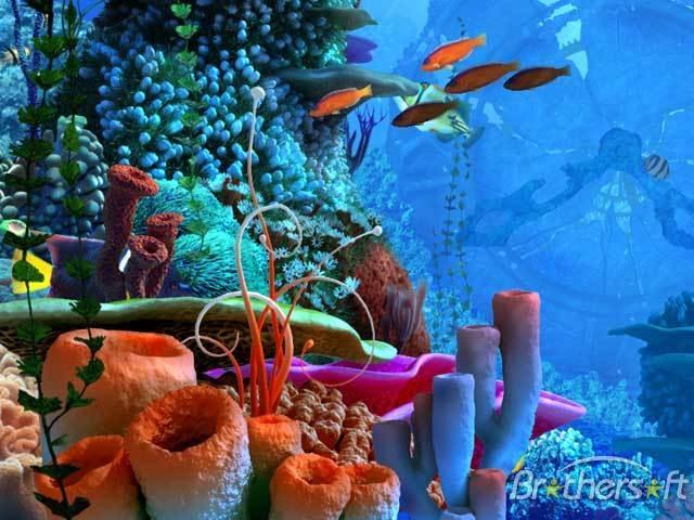 ia bukanlah sekadar aktiviti biasa tetapi dengan keindahan dasar laut yang mempesona boleh membuka minda kita dan menyedarkan tentang kebesaran