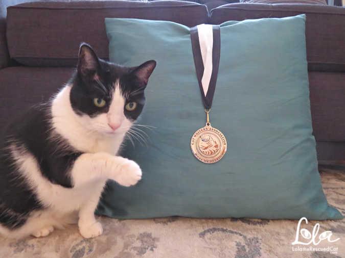 Muse Medallion|Cat Writers' Association