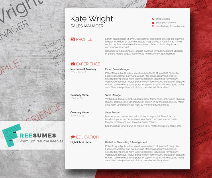 Resume Template For Windows
