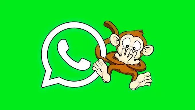 Dicas para não pagar mico no Whatsapp