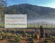 Merasakan Keseruan Mengunjungi Wisata di Rancaupas Bandung