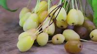 fruit around the world, strange fruit, strange fruit around the world, crazy fruit, crazy fruit around the world, PACIFIC CRAB APPLE