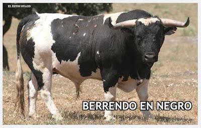 Diferentes razas de toros - Página 5 Bn