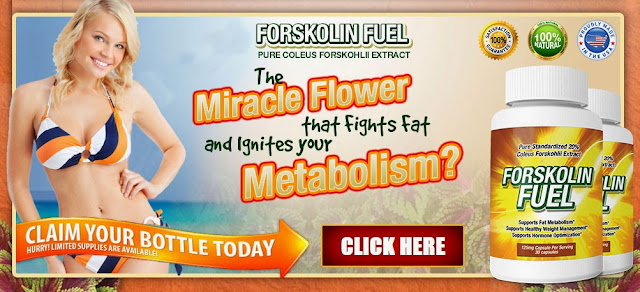 Forskolin fuel side effects