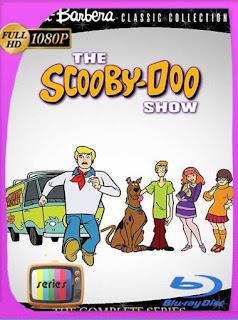El show de Scooby-Doo Temporada 1 [1080p] Latino [GoogleDrive] PGD