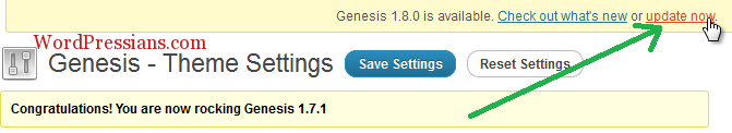 How To Update Genesis Framework