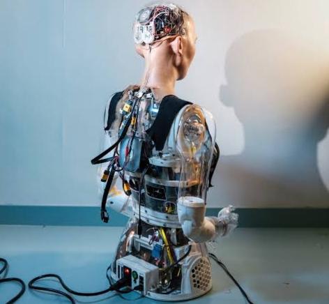Sophia ( A social humanoid Robot with Saudi Arabian Citizenship )    Nine Robotic Siblings of Hanson Robotics