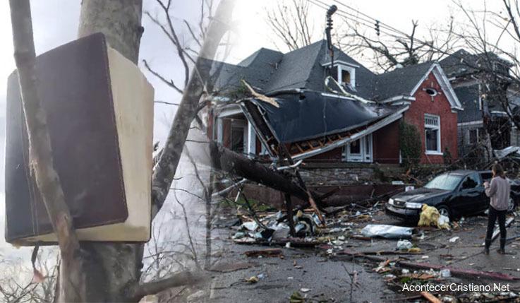 La Biblia en un árbol tras tornado