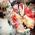 Địch Hậu của tác giả Kiều Ninh là là câu chuyện về tình yêu của hai người bọn họ, cũng có thể là thù địch vì hắn dám cướp đi tự do của cả ...