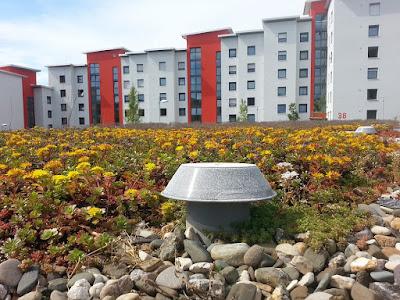 tetto piano-tetto giardino-architettura-sostenibilità