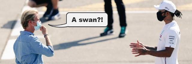 "Someone saying ""A swan?!"" to Lewis Hamilton"