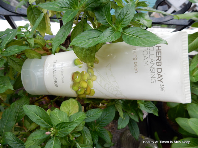 The Face Shop Herb Day Mung Bean Cleansing Foam