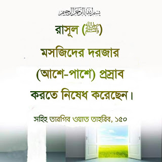 bangla islamic quotes with pictures  quran quotes in bengali