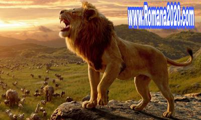 هل تعلم معلومات عن الأسد lion ملك الغابة ثقف نفسك