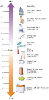 Kandungan pH