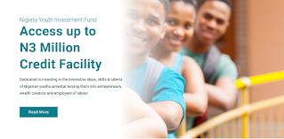 CBN N75 Billion NYIF Application Form Guidelines 2020/2021