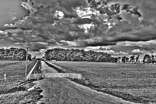 Paisaje en B&N.tranquera en campo con un cielo nuboso.
