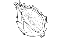 pitaya clipart black and white