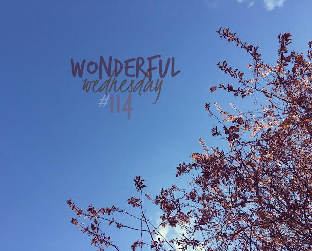 Wonderful Wednesday #114