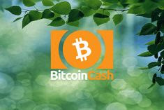 Showing logo of Bitcoin cash in green background