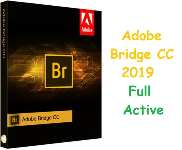 Adobe Bridge CC 2019 Free Download