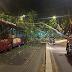 Roma, albero cade su autobus notturno: feriti lievi