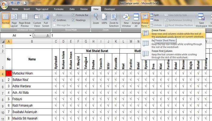 Cara Simple Mengunci Judul Tabel MS Excel Tetap Berada Diatas