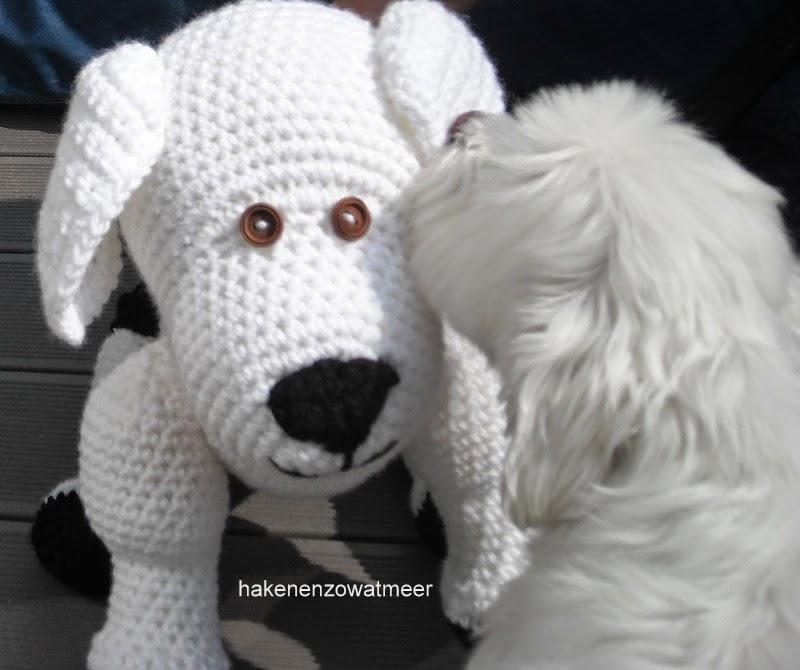 Haken En Zo Wat Meer Tinekeshaakpatronen Haakpatroon Hond Bas