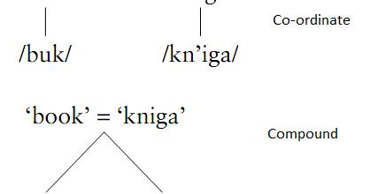 argumentative essay about bilingualism