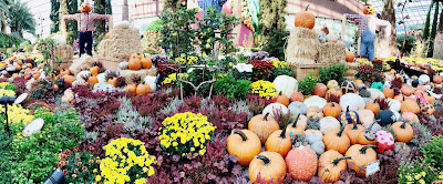 Autumn Harvest at Garden by the bay