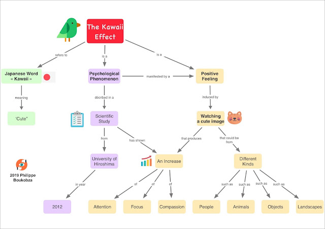 Concept Map: The Kawaii Effect