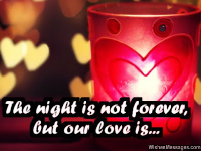 Romantic Good Night Love Quotes: the night is not forever, but one love is.