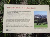 Ecological grasses - Royal Botanic Gardens, Sydney, Australia