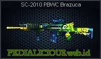 SC-2010 PBWC Brazuca