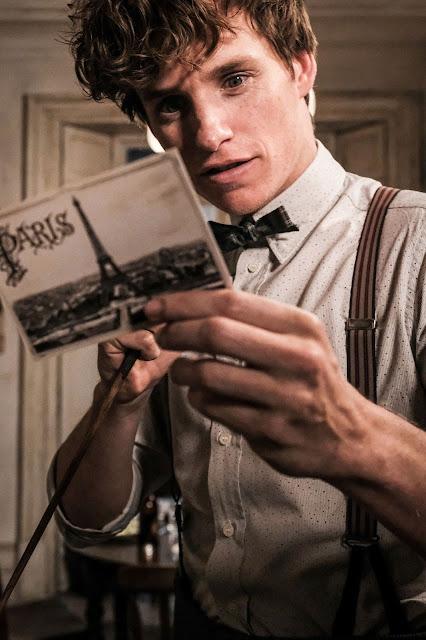 Foto do Newt recebendo um cartão-postal de Paris é divulgada sem marca-d'água | Ordem da Fênix Brasileira