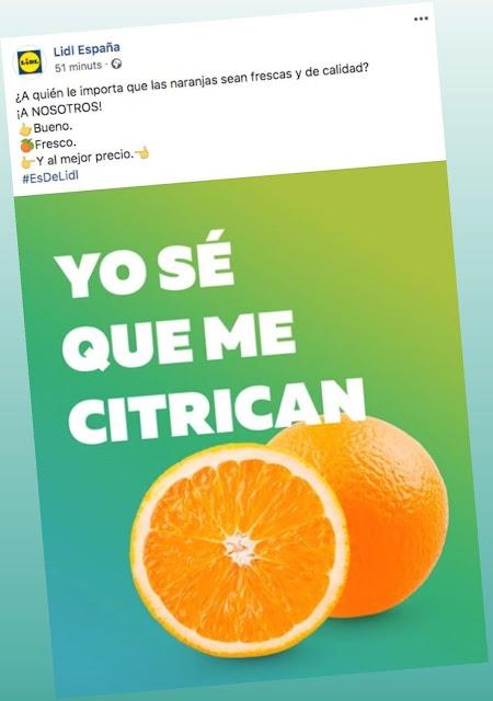 citricos lidl