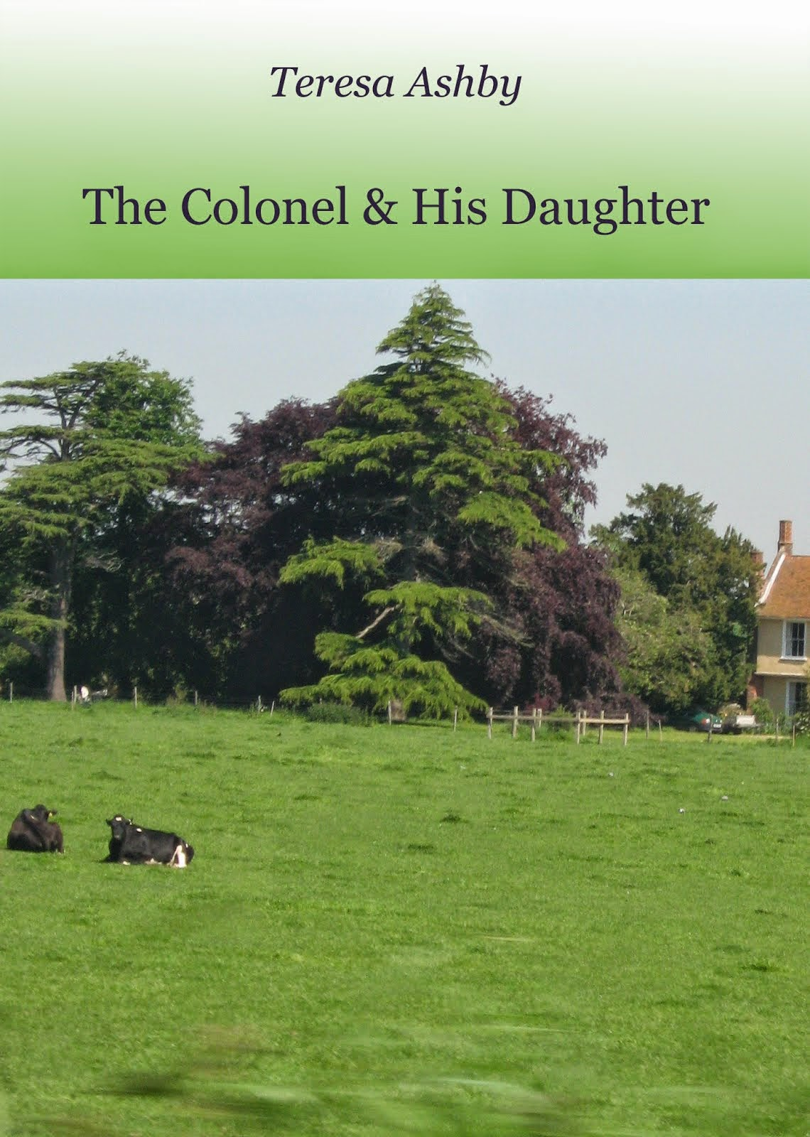 The Colonel and His Daughter - Kindle