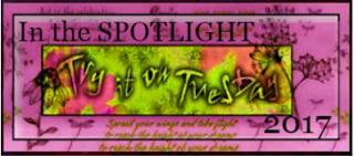 2017 Spotlight