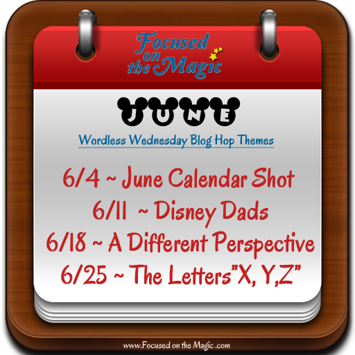 Disney Wordless Wednesday Blog Hop Themes | hosted by Focused on the Magic.com