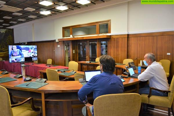 La Comisión TIC de la Fecai trabaja en la mejora de los servicios públicos digitales