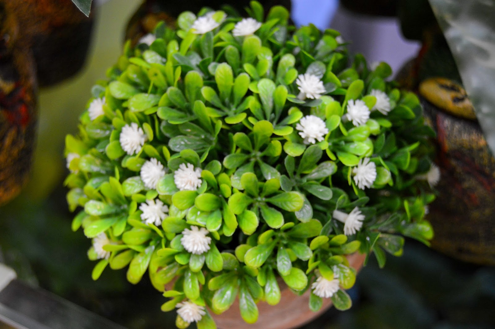 Flower vase green leaves and white flowers - free stock photos - free images & wallpapers